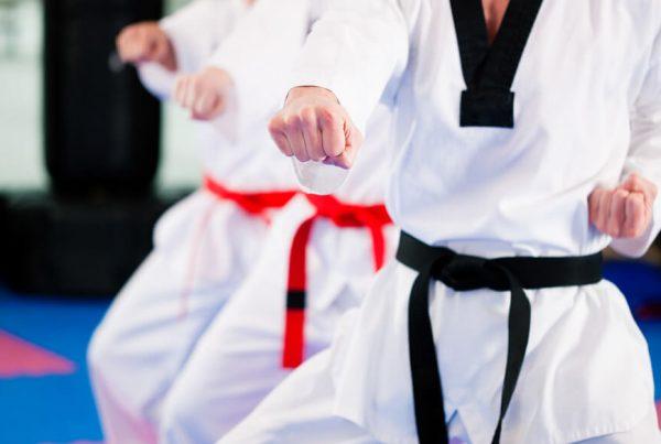 Martial art insurance